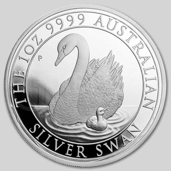 srebrny łabędź